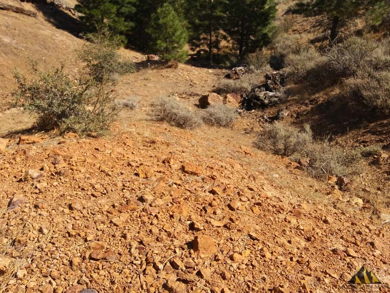 Looking downhill at the ravine on the southern 1/2 of the 40 acre gold placer claim.