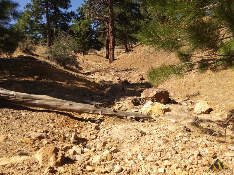 A good photograph of the width of the ravine in some areas.  This area shows over 4 feet of workable area and gold-bearing gravels showing near the surface.