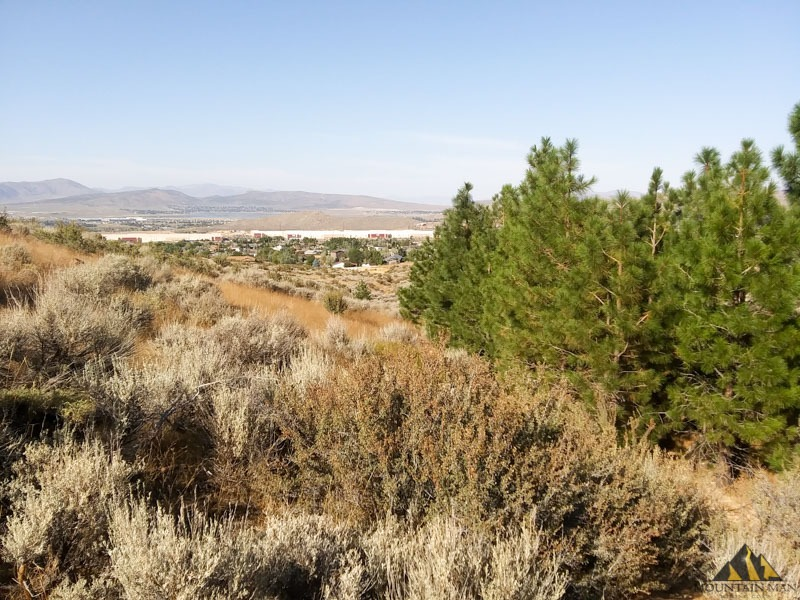 Looking north into the city of Reno from the Nevada Industrial placer claim.