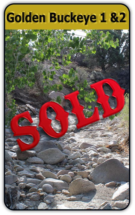 Nevada Industrial Placer Gold Claim Sample Results