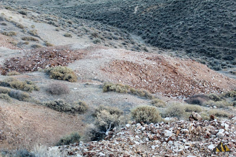silver crescent mine tailings
